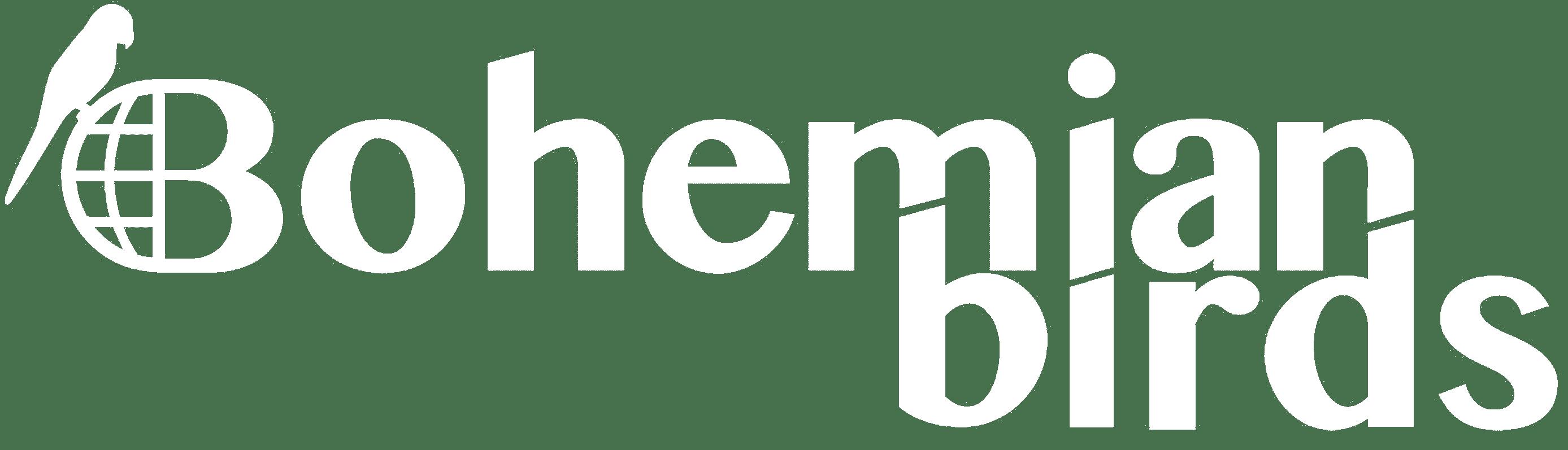 bb logo wit